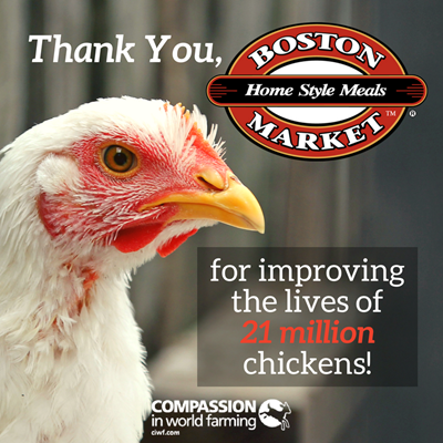 Boston Market FB Share.png